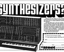 Moog & Vibronic Interview Part 2